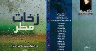 صورة زخات المطر