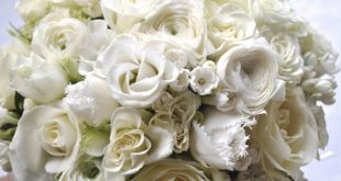 صور باقة ورد بيضاء
