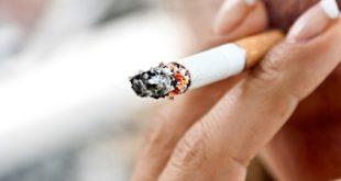 صورة بحث حول التدخين بالفرنسية