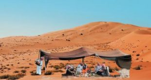 صورة ما هو اصل العرب
