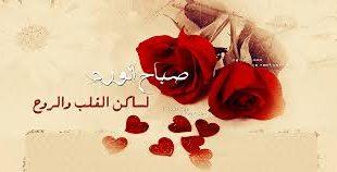 صورة صباح الورد حبيبتي