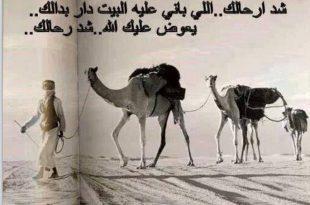 صورة كلام البدو