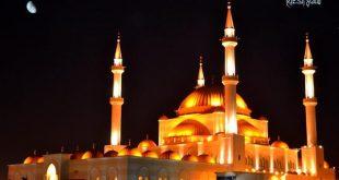صورة قصر المملكة بحائل
