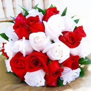 صورة بوستات زهور