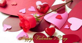 صور ورد عيد الحب