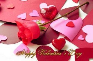 صورة ورد عيد الحب