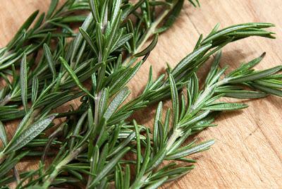 صورة فوائد نبات اكليل الجبل
