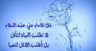 بالصور درر الامام علي 20160821 627 1 310x165