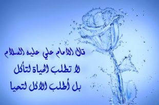 بالصور درر الامام علي 20160821 627 1 310x205